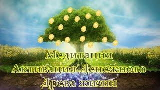 Медитация Активация Денежного Древа Жизни