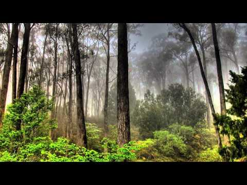 Kyau & Albert - Always A Fool (Original Mix)[HD]