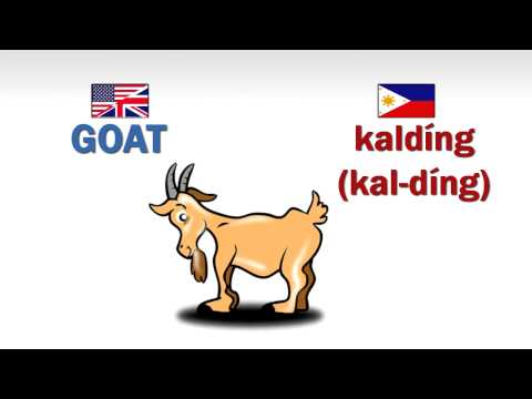 How to speak Ilokano (Ilocano) - Domestic Animals  (Part 1)
