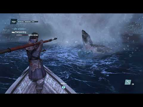 Sea Pirates Of The Northern Atlantic Ship Robbery Whale Hunting Legendary Ship Battle and More