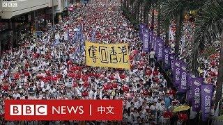 逃犯條例:香港百萬大遊行抗議修訂《逃犯條例》- BBC News 中文  一國兩制 