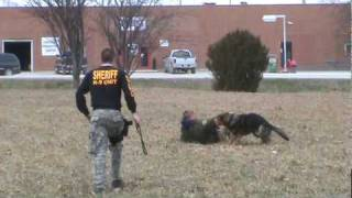 Cass County Iowa Sheriff's K-9 Unit  Video #2.mpg