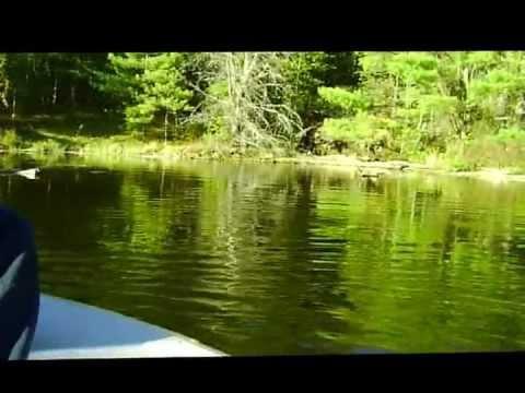 Fishing Weekend Bissett Creek Ont