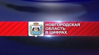 Новогородская область в цифрах. Электропоезд «Ласточка»