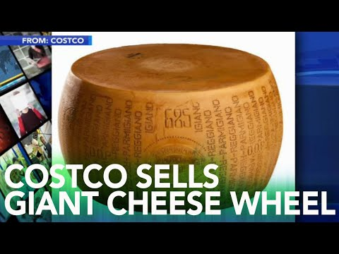 cheese-lovers:-you-can-buy-a-cheese-wheel-wedding-cake,-72-pound-cheese-wheel-at-costco