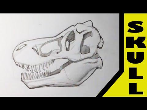 Drawing A T Rex Skull Skull Drawings Youtube