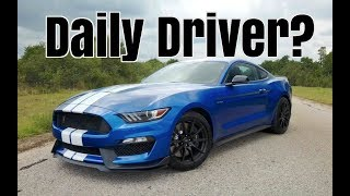 Can You Daily Drive A Shelby GT350?