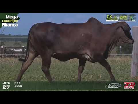 LOTE 027