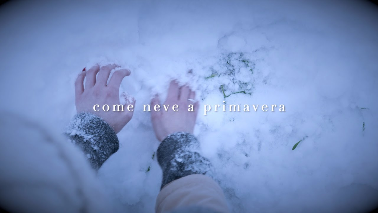 Elisa Montaldo Come Neve a Primavera - lyrics video