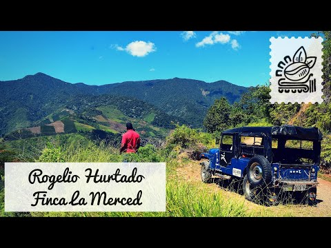 Specialty Coffee Grower - Rogelio Hurtado - Risaralda, Colombia