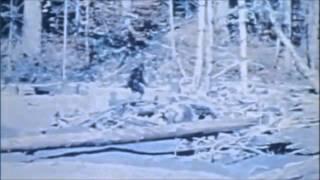Sasquatch: The Legend of Bigfoot Trailer 1977