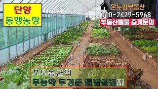 비닐하우스/채소재배/귀농귀촌