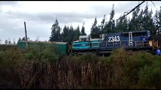 Attack causes the derailment of a freight train in the Mapuche region of Chile | AFP