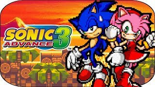 SONIC ADVANCE 3 (GBA) : Partenaires particuliers