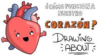 ¿CÓMO FUNCIONA EL CORAZÓN? ♥️ | Drawing About con @GlóbuloAzul