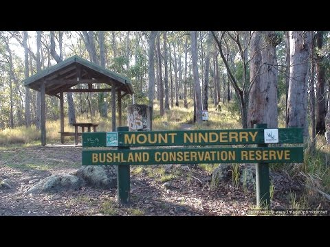 A Guided Look At Mount Ninderry - Queensland