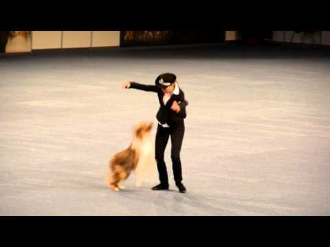 Vanda & All that Brandy Gentle Mate, Czech Republic - World Championship Dogdancing, Austria 2012