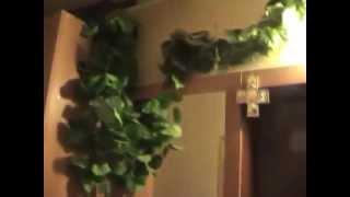 Продам свою 2-х комнатную квартиру в Одессе, Аркадия(, 2012-08-20T12:17:43.000Z)