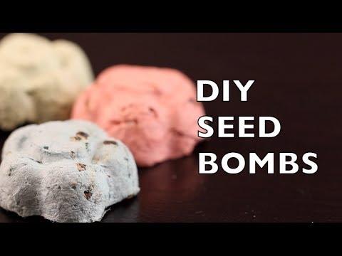How To Make Seed Bombs Seed Balls Craft Idea Diy