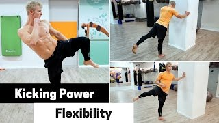 How to Develop Kicking Power and Mobility (Ft. Roundhouse Kick)
