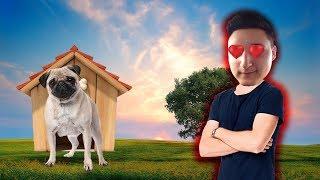 WE GOT a PET! | ROBLOX