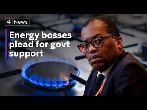 Energy bosses plead for extra support from government amid soaring prices