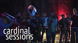 Moop Mama - Komplize - CARDINAL SESSIONS (Traumzeit Festival Special)