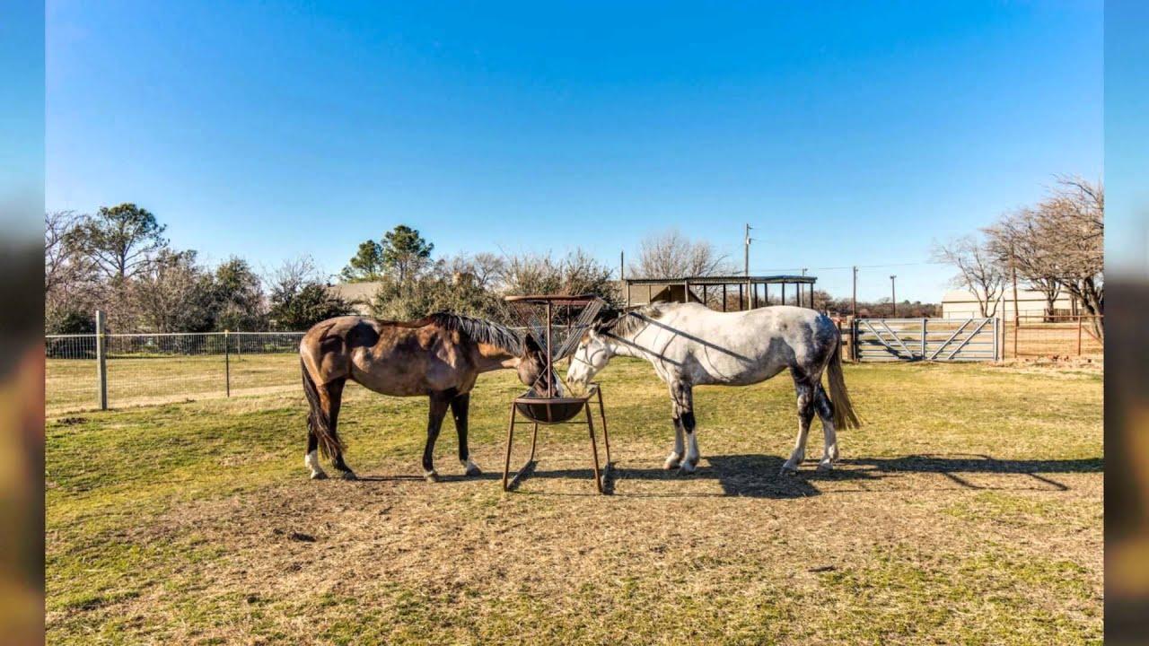 Keller Tx Horse Property