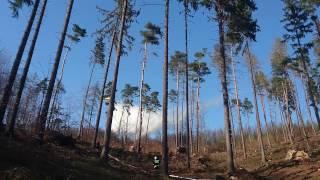20170401 - Pożar lasu w Witostowicach