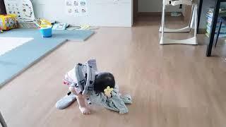 [육아일기] 아기띠하고 토끼 업어주는 조아인1