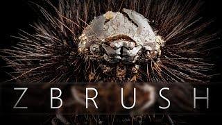 Descubra como organizar as referências dentro do próprio ZBrush