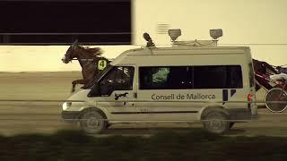 Vidéo de la course PMU PREMI TRISTAN