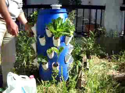 Γλαστρα φυσικης καλλιεργειας 1 Μαιου 2015