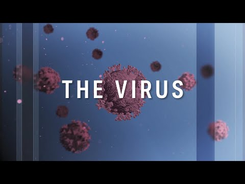 The Virus: Latest developments in the COVID-19 pandemic, 26 April | ABC News