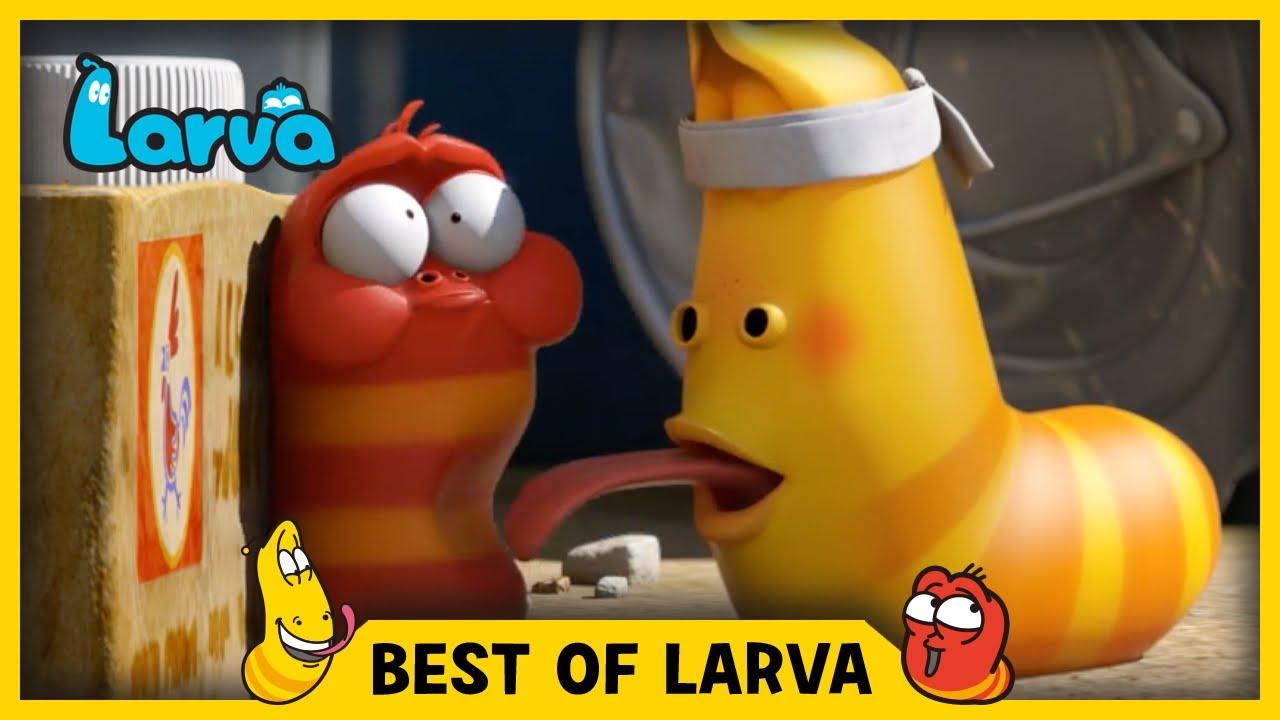 larva best of larva funny cartoons for kids cartoons for