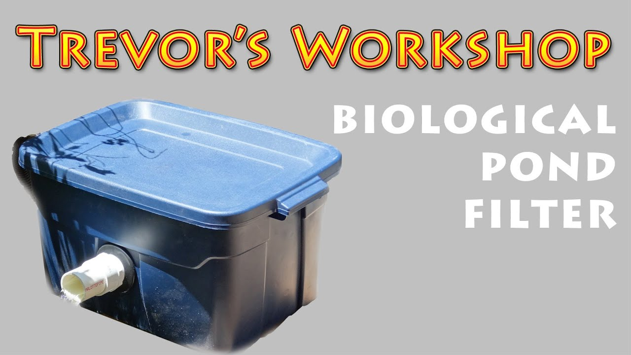 Homemade biological pond filter youtube for Pond water filtration systems home