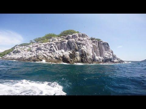 Rincón de Guayabitos. La Isla del Coral. Nayarit