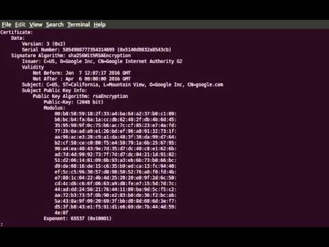 View the contents of a DER encoded certificate with OpenSSL - YouTube