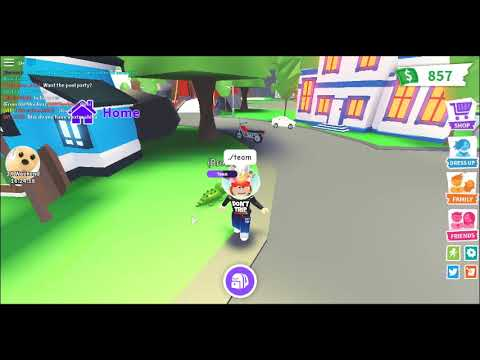 How To Get Team On Roblox Adopt Me Youtube