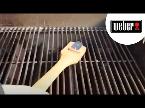 barbecue 233 lectrique weber q 2400 grey funnycat tv