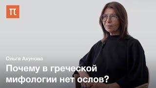 История сюжета романа «Метаморфозы, или Золотой осел» — Ольга Ахунова