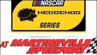HEDGEHOG SERIES ROUND 4 - FIRST DATA 500 NASCAR STOP MOTION