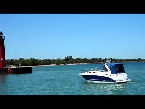 boating dog.MP4