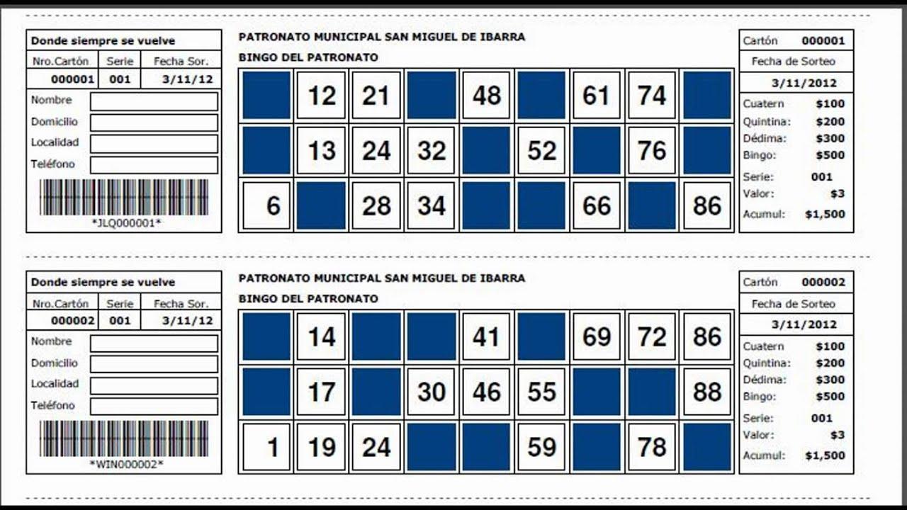 Cartones De Loteria Personalizados Programa De Control By Pablo Picornell