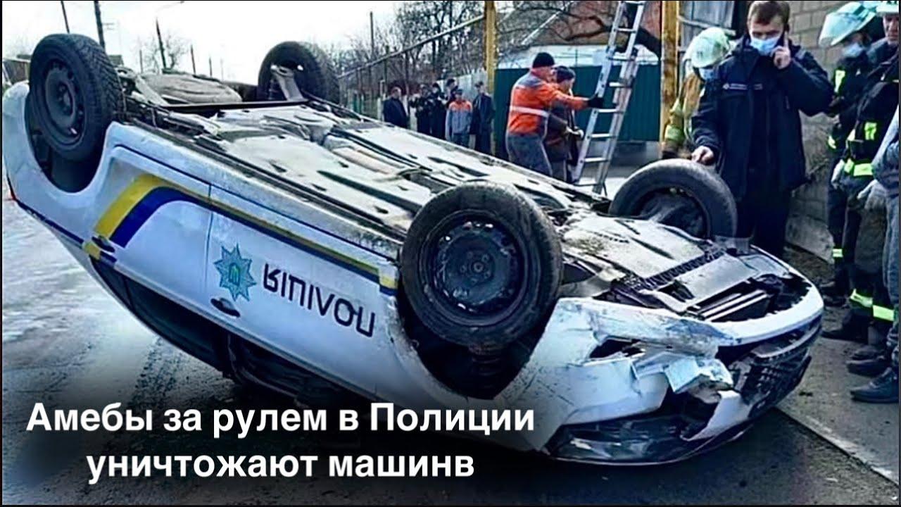 Амебы за рулем в Полиции уничтожают машины
