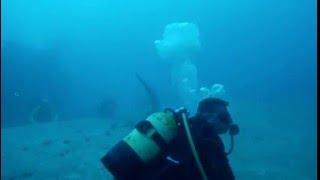 Cuba - Santa Lucia. immersione tra gli squali