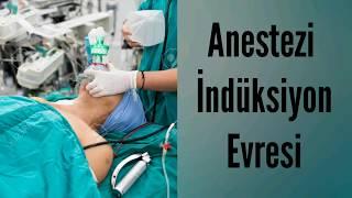 Genel Anestezi Uygulaması/Okan Üniversitesi SHMYO Anestezi Programı Simülasyon Uygulamaları