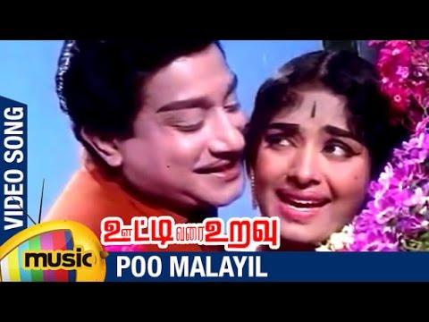 Ooty Varai Uravu Tamil Movie Songs | Poo Malayil Video Song | Sivaji Ganesan | KR Vijaya