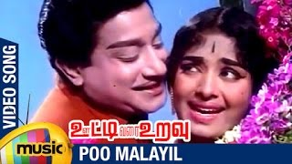 Ooty Varai Uravu Tamil Movie Songs | Poo Malayil Video Song | Sivaji Ganesan | KR Vijaya
