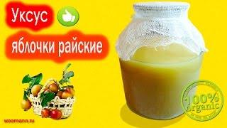 Уксус яблочный легкий рецепт